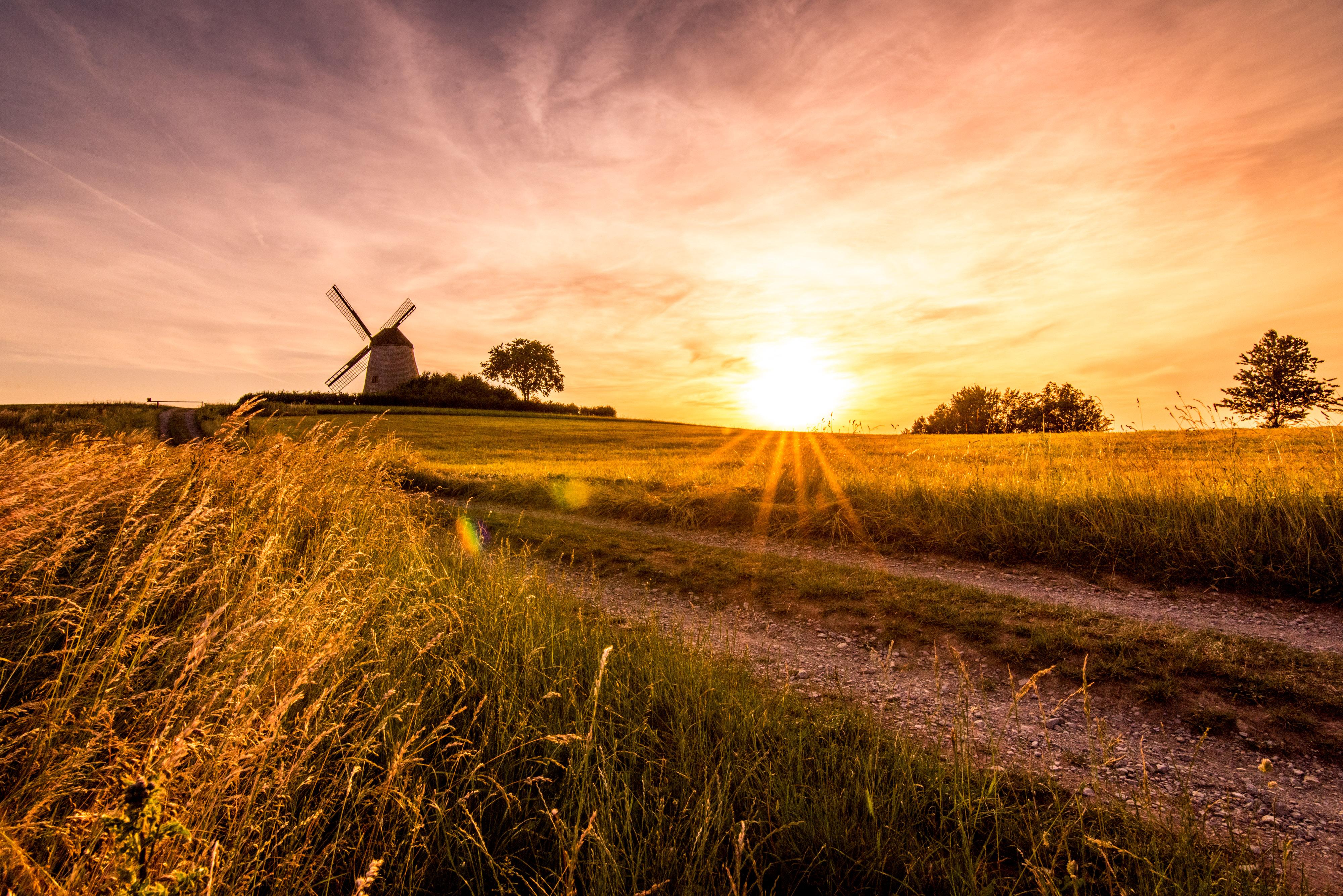 Windmühle im Lipperland